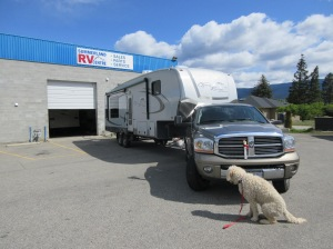 It's all good, The Dog keeps watch on the home on wheels