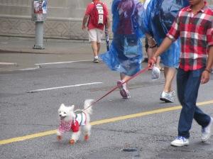 Canada Day Ottawa 120