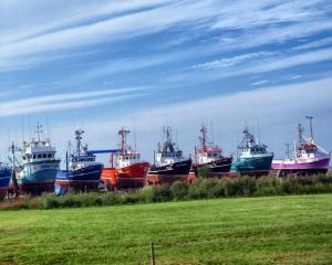 coloured ships