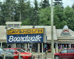 Cavendish boardwalk